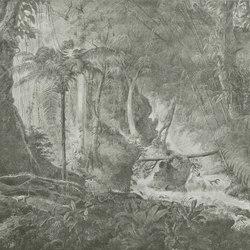 Rain forest | Wandbeläge / Tapeten | WallPepper