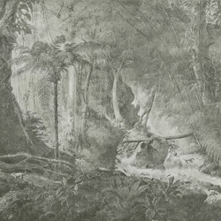 Rain forest | Carta parati / tappezzeria | WallPepper