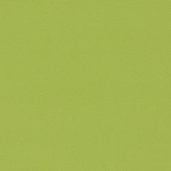 Amplify | Tejidos tapicerías | CF Stinson