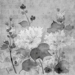Velvet grey | Wall coverings / wallpapers | WallPepper