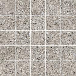 EVOLUTION 4D | D.EVOLUTION GREY MOSAIC | Piastrelle ceramica | Peronda
