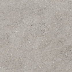 EVOLUTION 4D | EVOLUTION GREY/R | Ceramic tiles | Peronda