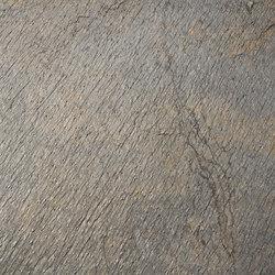Shining Tree | Wall veneers | Skinrock