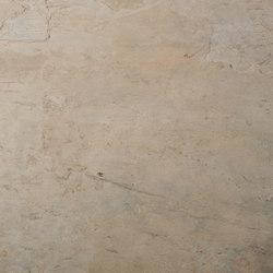 Wood Root | Wall veneers | Skinrock