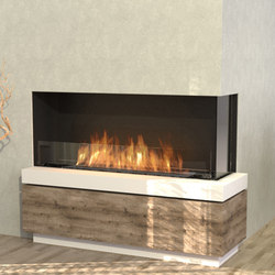 Flex 50RC | Fireplace inserts | EcoSmart Fire