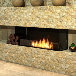 Flex 68BY.BXL | Fireplace inserts | EcoSmart™ Fire