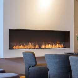 Flex 104SS | Fireplace inserts | EcoSmart™ Fire