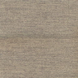 Linthic | Colour Greige 07 | Drapery fabrics | DEKOMA