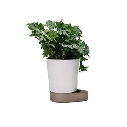 Sip Plant Pot   Vasi piante   Case Furniture