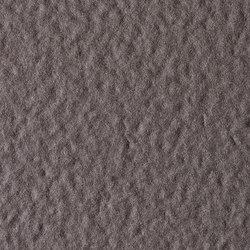 Fossil | Ebano | Lastre ceramica | Lapitec