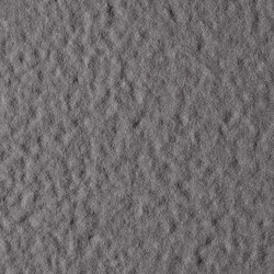 Fossil | Grigio Piombo | Keramik Platten | Lapitec