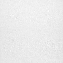 Arena | Bianco Assoluto | Ceramic panels | Lapitec