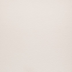 Arena | Bianco Polare | Ceramic panels | Lapitec