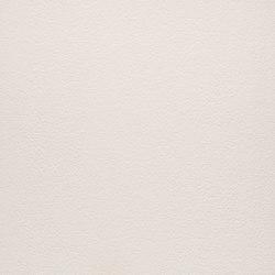 Arena | Bianco Polare | Keramik Platten | Lapitec