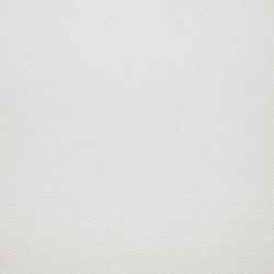 Arena | Artico | Planchas de cerámica | Lapitec