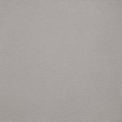 Arena | Grigio Cemento | Ceramic panels | Lapitec