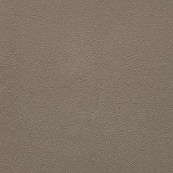 Arena | Moca | Ceramic panels | Lapitec