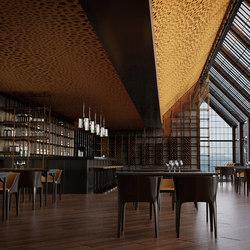 da voronoi ceiling | Acoustic ceiling systems | SPÄH designed acoustic