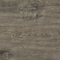 Bright Forest | Forest Brown | Ceramic tiles | FLORIM