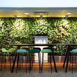 Indoor Vertical Garden | Åke Sundvall | Plant pots | Greenworks