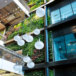 Indoor Vertical Garden | Biomedicum | Living / Green walls | Greenworks