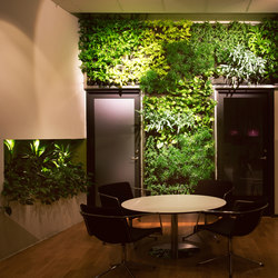 Indoor Vertical Garden | IHM Business School | Pflanzgefäße | Greenworks