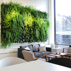 Indoor Vertical Garden | Superfruit | Maceteros | Greenworks