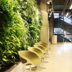 Indoor Vertical Garden   Tele 2 Arena Vip Lounge Area   Plant pots   Greenworks