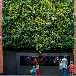 Indoor Vertical Garden | Triangeln Malmö | Living / Green walls | Greenworks