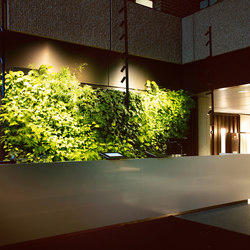 Indoor Vertical Garden | Trygg-Hansa Headoffice | Plant pots | Greenworks
