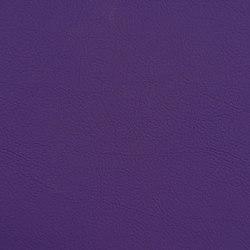 VALENCIA™ ULTRA VIOLET | Upholstery fabrics | SPRADLING