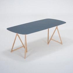 Koza table | 200x90 | linoleum | Tavoli pranzo | Gazzda