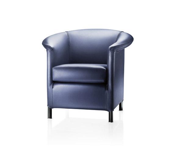 Aura by Wittmann | Lounge chairs