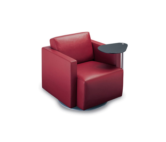 Nelson 605 armchair by Walter Knoll | Lounge chairs