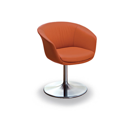 Bob dining chair by Walter Knoll | Restaurant chairs