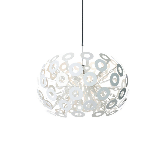 dandelion Pendant light by moooi | General lighting