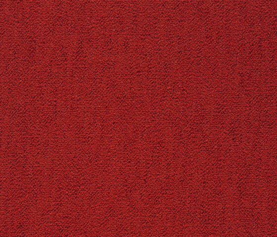 Coral 550 by Kvadrat | Fabrics
