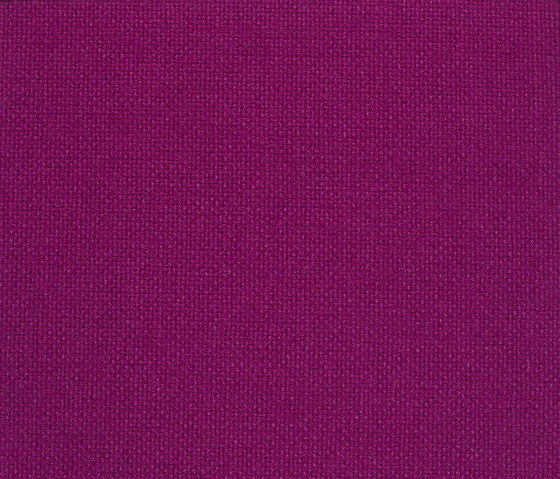 Hallingdal 65 563 by Kvadrat | Fabrics