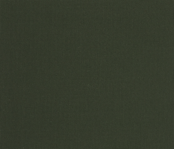Orange 351 by Kvadrat | Fabrics