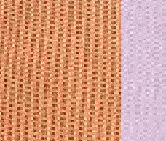 Florentijn 529 by Kvadrat   Curtain fabrics