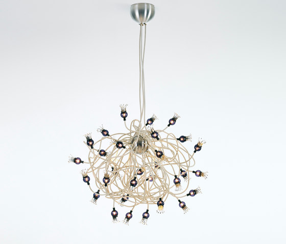 Poppy Suspension by serien.lighting | General lighting