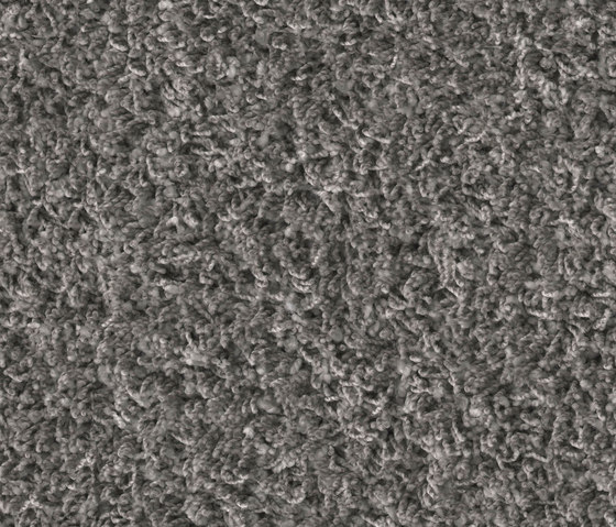 poodle 1400 von object carpet poodle 1484 poodle 1451. Black Bedroom Furniture Sets. Home Design Ideas