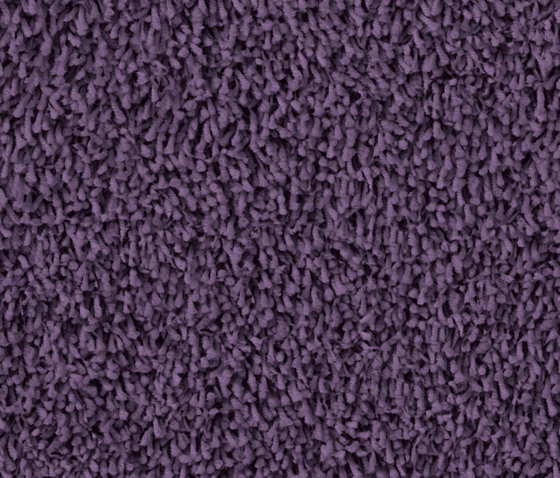 Tosh 1408 Pflaume by OBJECT CARPET | Rugs