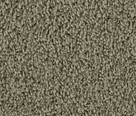 Tosh 1413 Khaki by OBJECT CARPET | Rugs