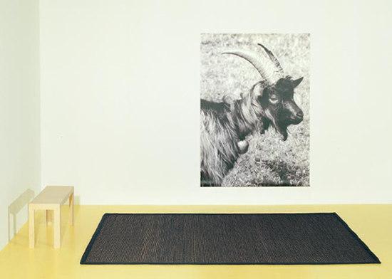Capra 283 by Ruckstuhl | Rugs / Designer rugs