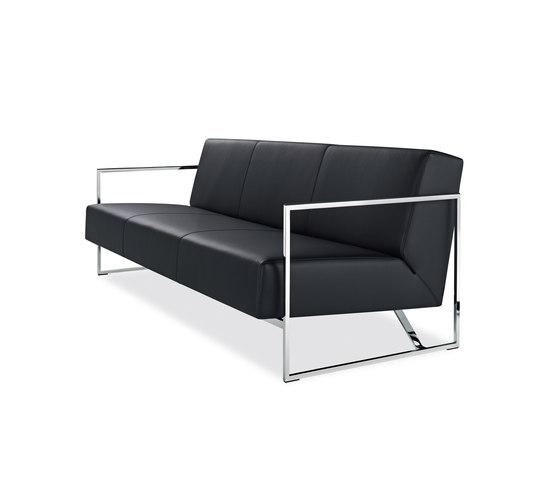 Sen Sofa von Walter Knoll   Loungesofas