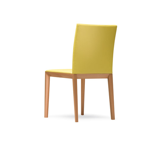 Andoo chair by Walter Knoll | Restaurant chairs