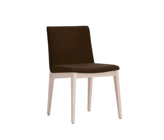 Duna 216 by Capdell | Restaurant chairs