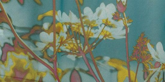 Sielo by Création Baumann | Curtain fabrics