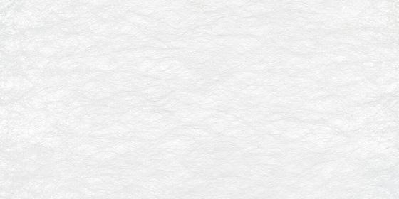 GECKO CRYPTA II - 5001 de Création Baumann | Tejidos para cortinas